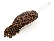 Granos de café en una cucharada Foto de archivo libre de regalías