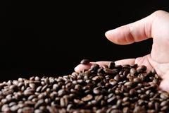 Granos de Cofee Imagen de archivo libre de regalías