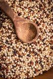Granos de la quinoa orgánicos fotos de archivo