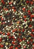 Granos de pimienta Imagen de archivo