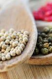 Granos de pimienta clasificados Foto de archivo libre de regalías