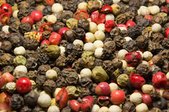 Granos de pimienta mezclados Imagenes de archivo