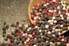 Granos de pimienta mezclados Foto de archivo libre de regalías