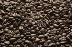 Granos del café Foto de archivo