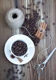 Granos del café y de la especia Fotografía de archivo libre de regalías
