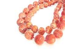 Granos del coral rojo Foto de archivo libre de regalías