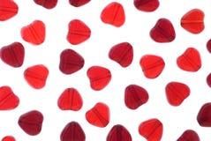 Granos del corazón Imágenes de archivo libres de regalías