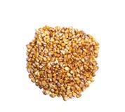 Granos del maíz Foto de archivo libre de regalías