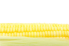 Granos del maíz maduro fotografía de archivo