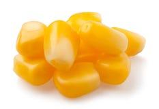 Granos del maíz Imágenes de archivo libres de regalías