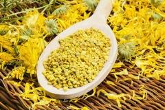 Granos del polen de la abeja con el calendula amarillo seco alrededor Imagen de archivo