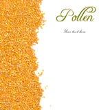 Granos del polen de la abeja con el espacio de la copia Fotografía de archivo libre de regalías