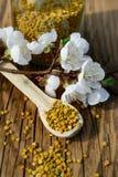 Granos del polen de la abeja en tarro y cuchara de madera en la tabla de madera con las flores de los árboles de la primavera Api Fotografía de archivo libre de regalías