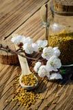 Granos del polen de la abeja en tarro y cuchara de madera en la tabla de madera con las flores de los árboles de la primavera Api Fotos de archivo libres de regalías