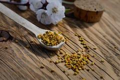 Granos del polen de la abeja en una cuchara de madera en la tabla de madera Apitherapy Productos de la abeja Foto de archivo