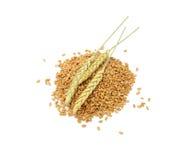 Granos del trigo con los oídos Imágenes de archivo libres de regalías