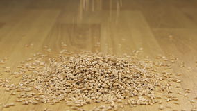Granos del trigo que caen en una pila de trigo almacen de video