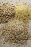 Granos del trigo y de avena con arroz moreno Imagen de archivo libre de regalías