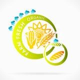 Granos orgánicos Imagen de archivo libre de regalías