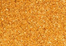 Granos orgánicos procesados del trigo Imagenes de archivo