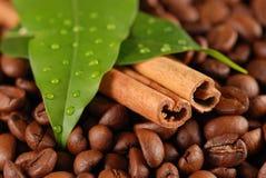 Granos y cinamomo de café Fotografía de archivo