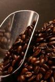 Granos y cucharada de café Imágenes de archivo libres de regalías