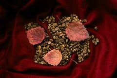 Granos y hojas de arce de café en un paño de lana rojo Fotografía de archivo
