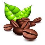 Granos y hojas de café stock de ilustración