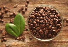 Granos y hojas de café fotografía de archivo libre de regalías