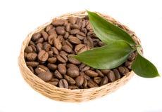 Granos y hojas de café Fotografía de archivo