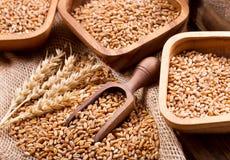 Granos y oídos del trigo en una tabla de madera Imagenes de archivo