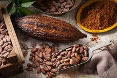 Granos y vaina de cacao fotografía de archivo libre de regalías
