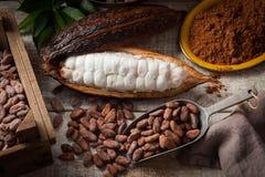 Granos y vaina de cacao imagen de archivo