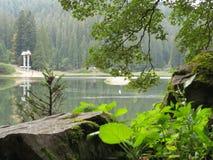 Granskog på den steniga kusten av skogsjön Royaltyfri Bild