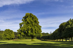 Grant Park, Forres. Stock Photos