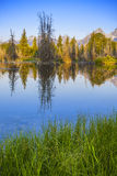 Grant teton national park Royalty Free Stock Photos