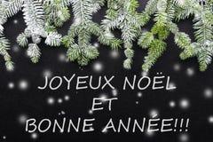 Granträd och snö på mörk bakgrund Hälsningsjulkort vykort christmastime grön white fotografering för bildbyråer