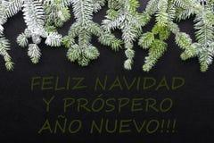 Granträd och snö på mörk bakgrund Hälsningsjulkort vykort christmastime Röd vitt och grönt royaltyfri foto