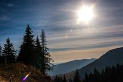 Granträd på skymning i höst Berg i bakgrunden Sun på skyen Arkivfoto