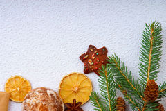 Granträdfilialen, kakor, torkade frukter och anis Royaltyfria Foton