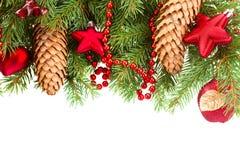 Granträd med röda julgarneringar och kottar Royaltyfria Bilder