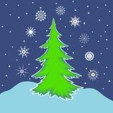 Grantree och snow Nio olika snöflingor Arkivfoto