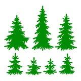 grantrees Royaltyfri Foto