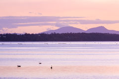 Grants Lagoon. Near Binalong Bay Tasmania Australia Stock Image