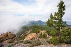 Granu Canaria góry krajobraz, Roque Nublo Zdjęcie Stock