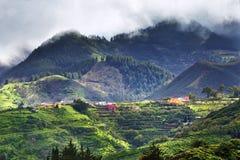 Granu Canaria wiejski krajobraz Fotografia Royalty Free