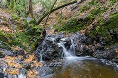 Granuja Falls flowing royalty free stock image