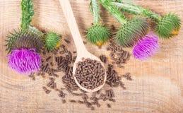 Granular and fresh thistle with flowers. Silybum marianum. Dietary supplement - granular and fresh thistle with flowers Silybum marianum, Scotch Thistle, Marian stock photo