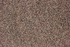 Granular wall surface texture. Granular surface background with small colored stones Stock Images