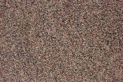 Granular wall surface texture Stock Images